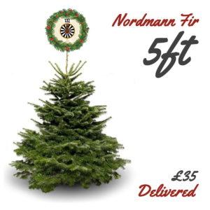 5ft Nordmann Fir Christmas Tree